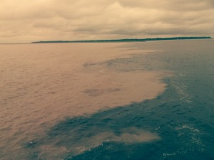 Rio Negro Meets the Amazon